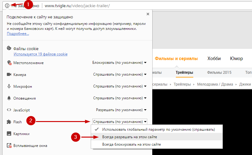 Как включить Adobe Flash на сайте